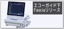 エコーガイド下 Fasciaリリース