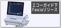 エコーガイド下 Fasciaリリース